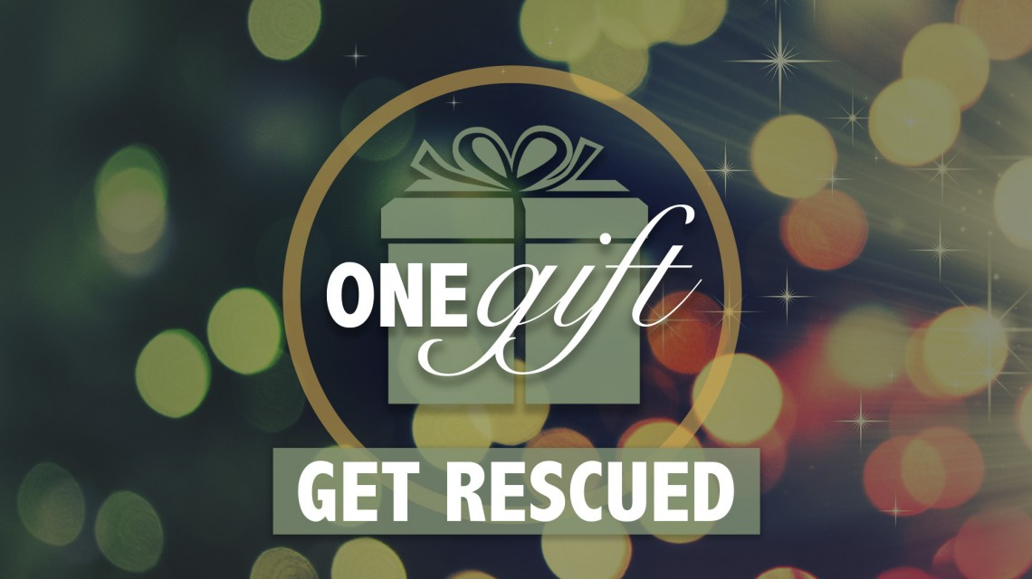 ONE Gift: Christmas Day