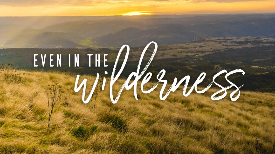He is with you in the wilderness